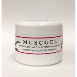 Gel MUSCGEL Aloe Vera 200 ml.