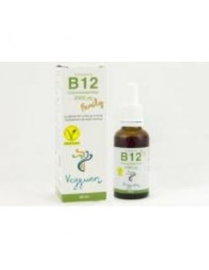 VITAMINA B12 family 30ml VEGGUNN