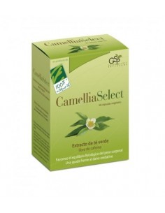 CamelliaSelect (Extracto de Te Verde) 60 cápsulas